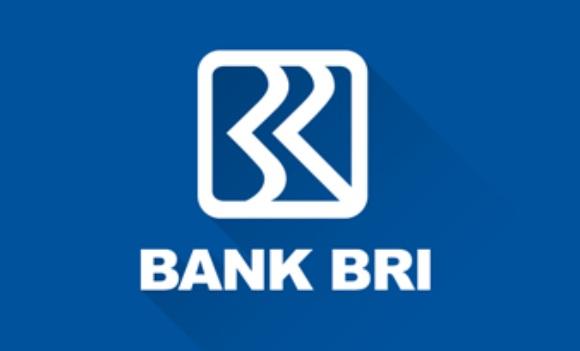 Cara Pinjam Uang Di Bank BRI Untuk Mahasiswa